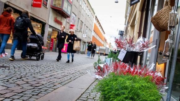 Gata med människor, handel och blommor
